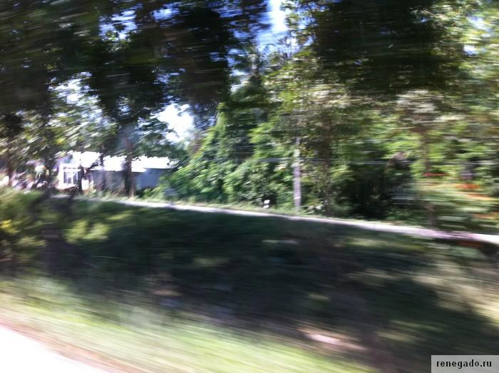 вид из окна на большой скорости